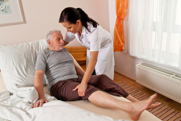 Jacksonville In Home Care for Seniors: A Family Guide
